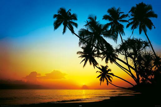 Plakát  Beach - Dusk