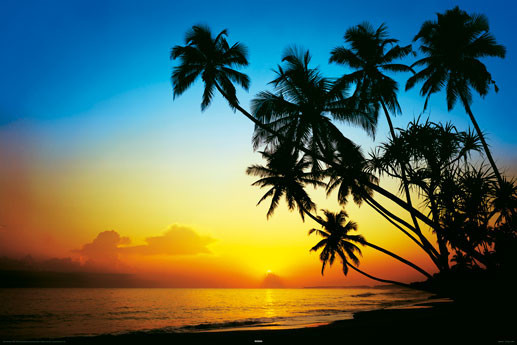 Plakat Beach - Dusk