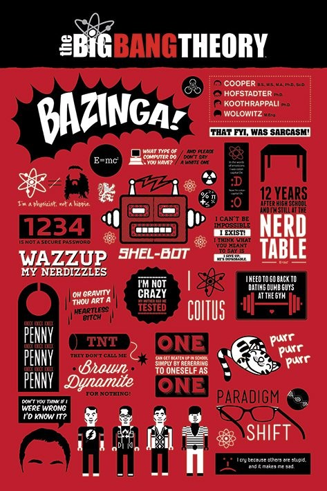 Plakát BIG BANG THEORY - infographic