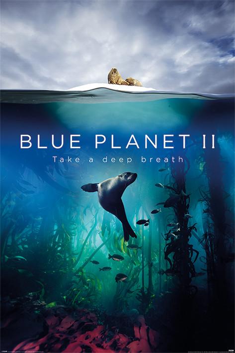 Plakát Blue Planet 2 - Take A Deep Breath