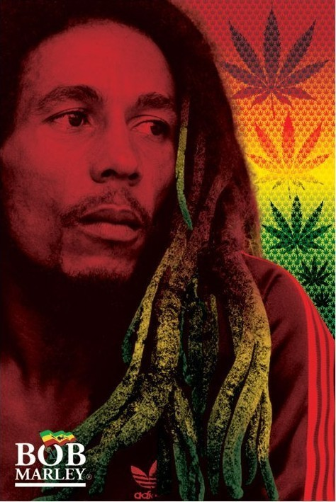 Plakát Bob Marley - dreads