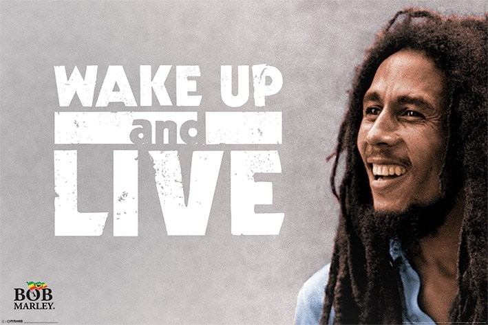 Plakát Bob Marley - Wake Up and Live