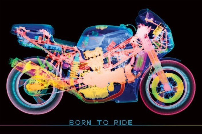 Plakát Born to ride - x-ray bike