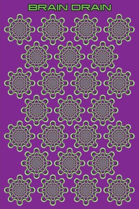 Plakát Brain Drain - optická iluze
