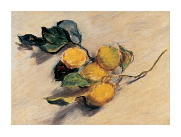 Reprodukcja Branch from a Lemon Tree