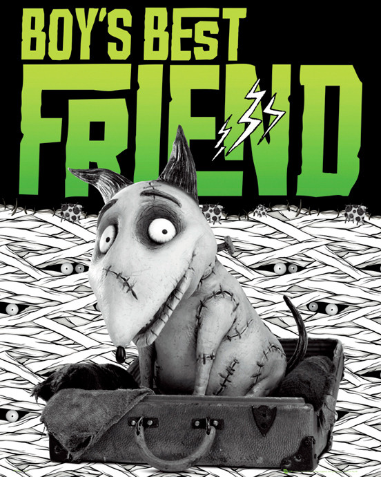 Plakát FRANKENWEENIE - best friend