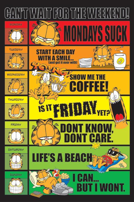 Plakát Garfield - days of the week
