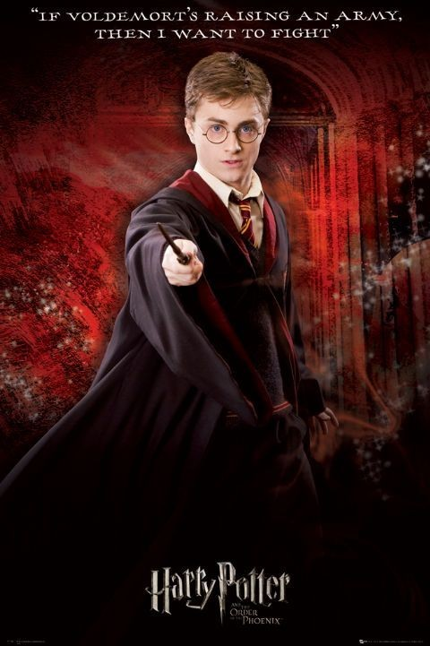Plakat HARRY POTTER 5 - solo