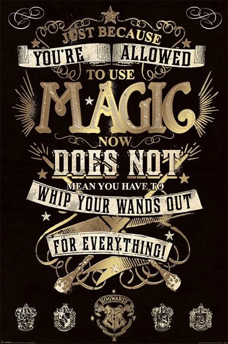 Plakát Harry Potter - Magic