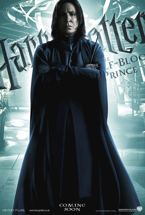 HARRY POTTER - snape plakát, obraz