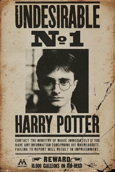 Plakát HARRY POTTER - undersirable n2