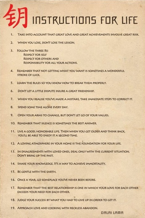 Plakát Instructions for live - návod pro život