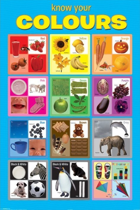 Plakat Know your colours