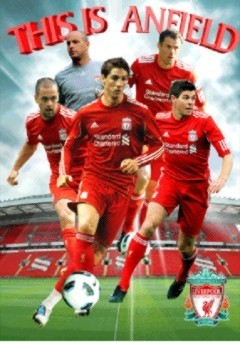 Liverpool - players 2010 Plakat 3D Oprawiony