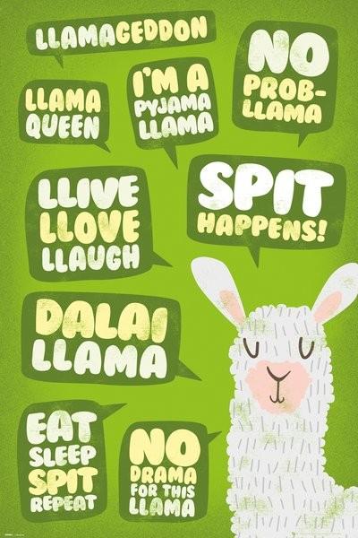 Plakát Llama - Quotes