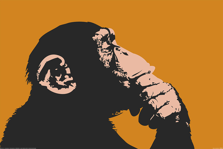 Plakat Małpy - Thinking