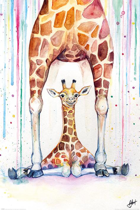 Plakát  Marc Allante - Gorgeous Giraffes