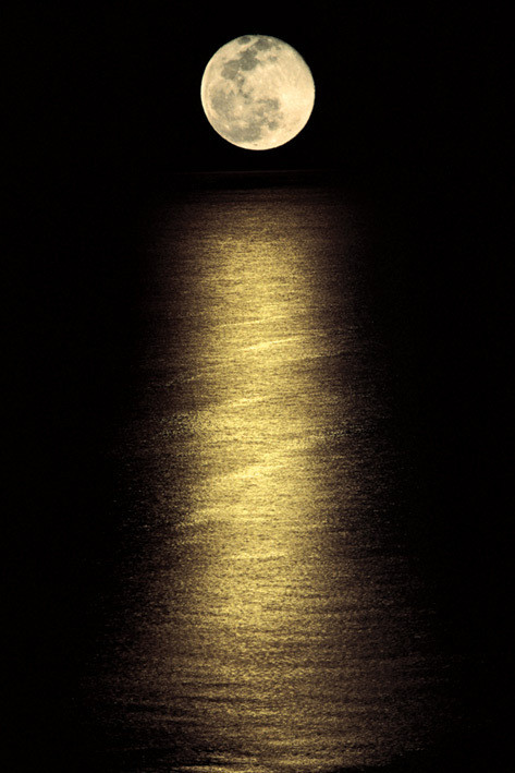 Plakat Moonlight ocean