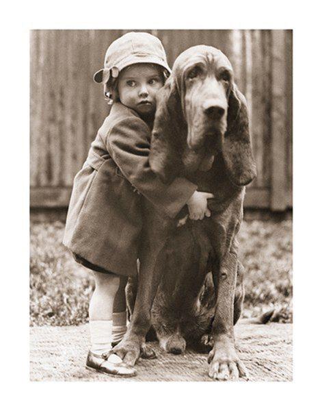 Plakát Nejlepší přítel člověka - objetí