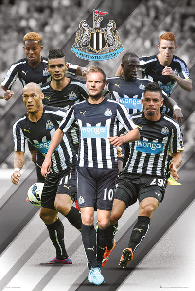 Plakát Newcastle United FC - Players 14/15