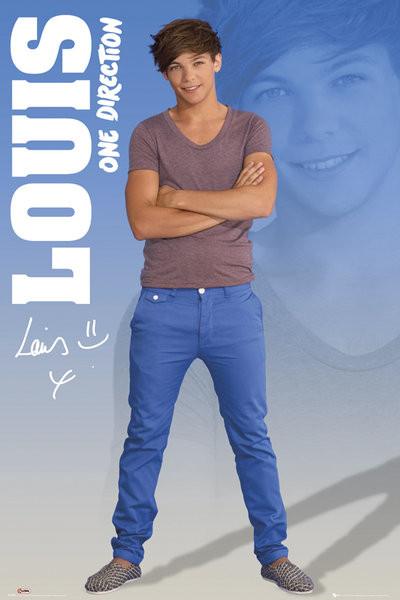 Plakat One Direction - louis 2012