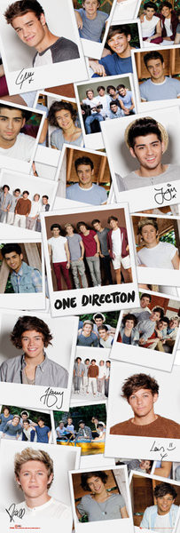 Plakát One Direction - polaroids
