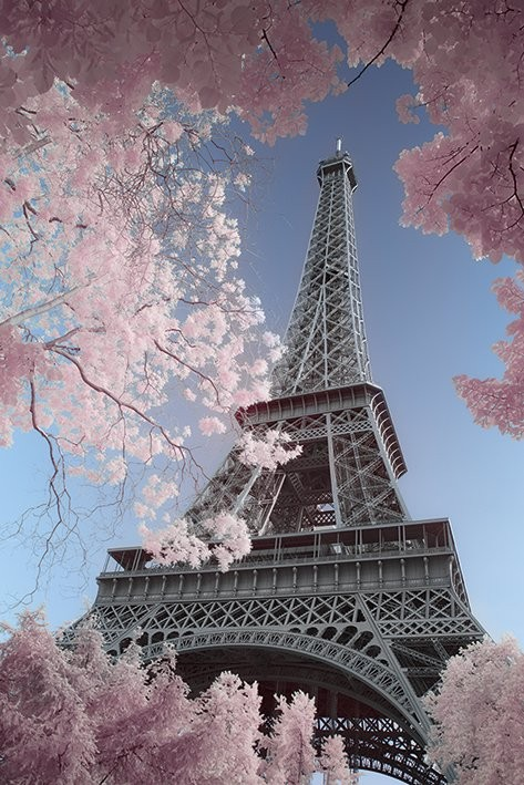 Plakat Paryz - Eiffel Tower, David Clapp
