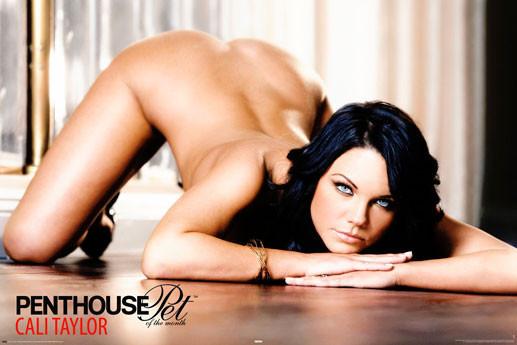 Plakat Penthouse - cali taylor
