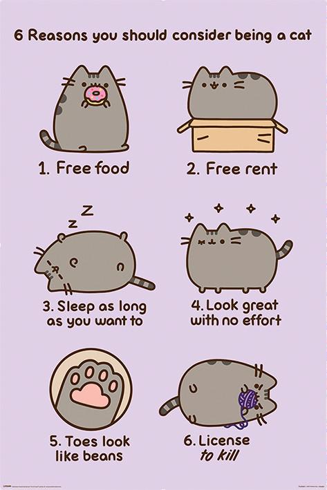 Plakát Pusheen - Reasons to be a Cat