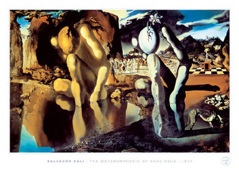 Plakát Salvador Dali - metamorphosis