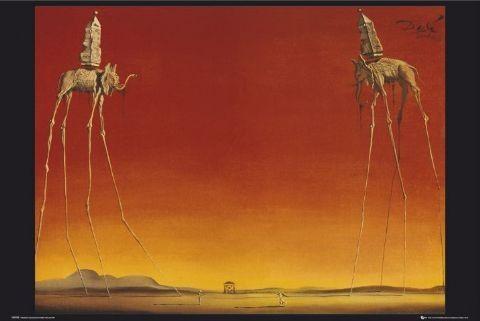 Plakát Salvador Dalí - sloni