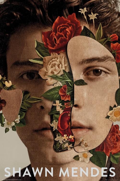 Plakát  Shawn Mendes - Flowers