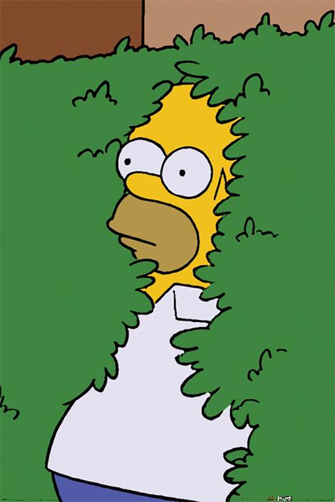 Plakát Simpsonovi - Homer Bush