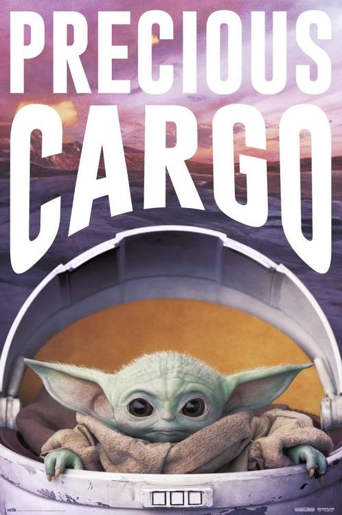 Plakát Star Wars: The Mandalorian - Precious Cargo