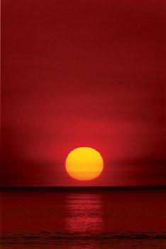Plakat Sunset