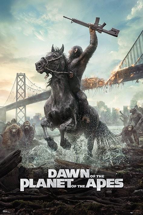 Plakát Úsvit planety opic - Kůň