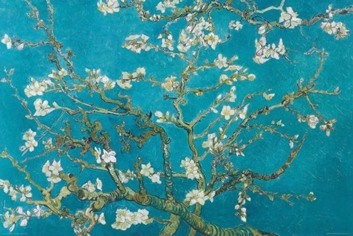 Plakát Vincent van Gogh - almond blossom san ramy 1890