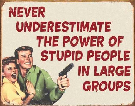 Plaque en métal EPHEMERA - Stupid People