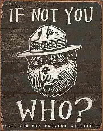 Plaque en métal SMOKEY BEAR - If Not You