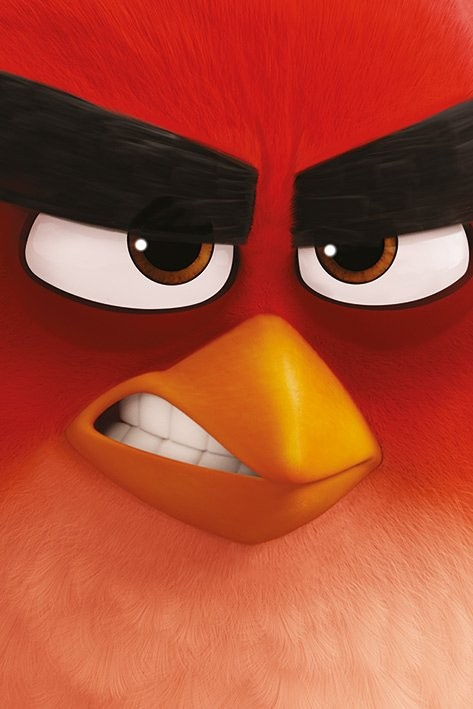 Póster Angry Birds - Red