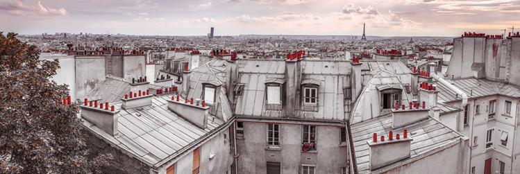 Póster  Assaf Frank - Paris Roof Tops
