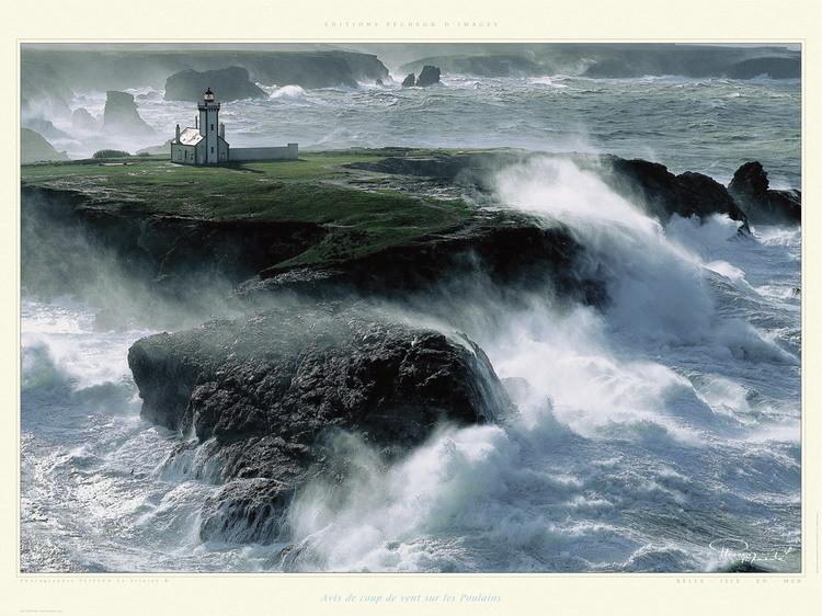 Avis de coup de vent sur les Poulains Poster / Kunst Poster