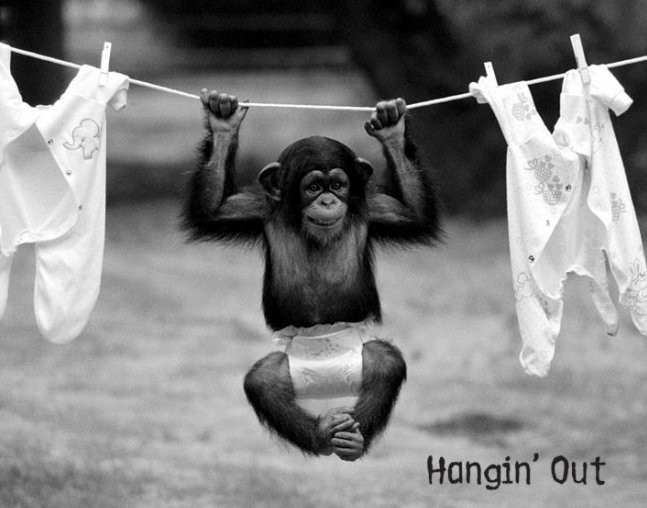 Hangin out poster, Immagini, Foto