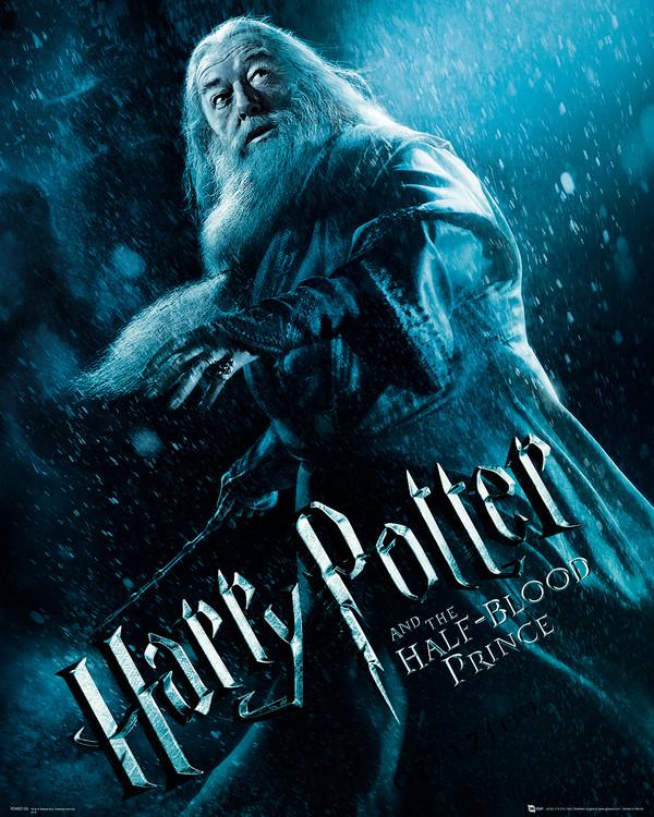 Harry Potter en de Halfbloed Prins - Albus Perkamentus Kunstdruk