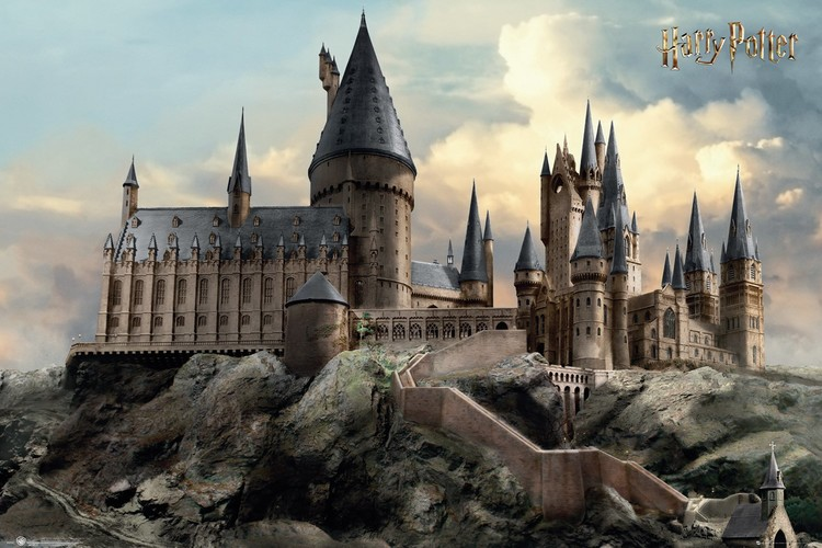 Póster  Harry Potter - Hogwarts Day