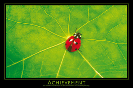 Poster Jan Lens - Achievement
