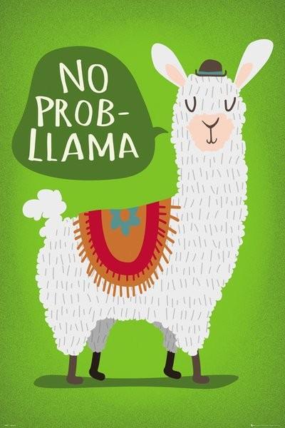 Póster  Llama - No Probllama