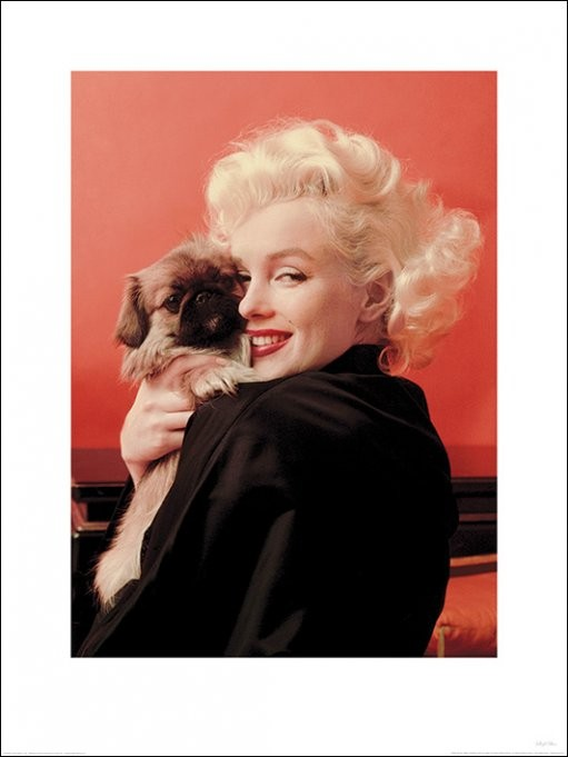 Marilyn Monroe - Love Kunstdruk