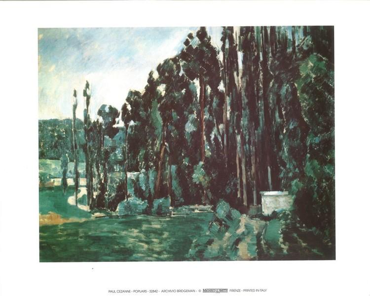 Poplars Kunstdruk