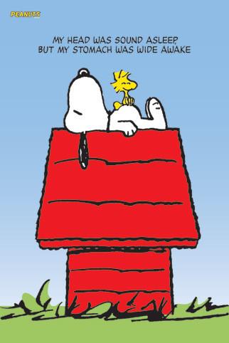 Snoopy Woodstock Poster Plakat 3 1 Gratis Bei Europosters
